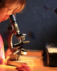 100 Things: Introductory Microscopy